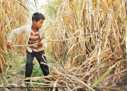 Children of the Fields: Child Labour in Agriculture