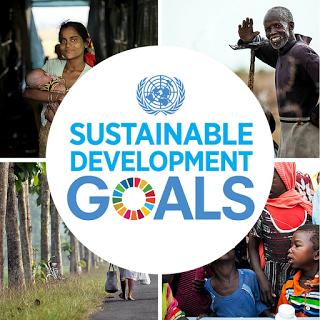 Sustainable Development Goals – Q & A