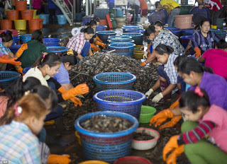 Trafficking and Forced Labour in Global Supply Chains – The Gender Lens