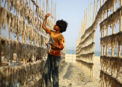 Supporting Action Against Child Labour in Asia