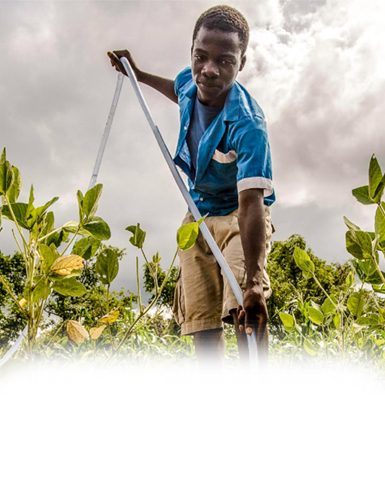 Immediate Action Needed to Address Pervasive  Child Labour in Agriculture