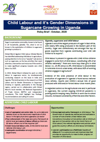 Policy Brief: Child Labour and its Gendered Dimensions in Sugarcane Growing in Uganda