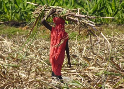 Just recovery interventions can and should eliminate child labour